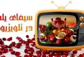 شبکههای مختلف سیما، برنامههای متنوعی را به مناسبت شب یلدا تدارک دیده است.