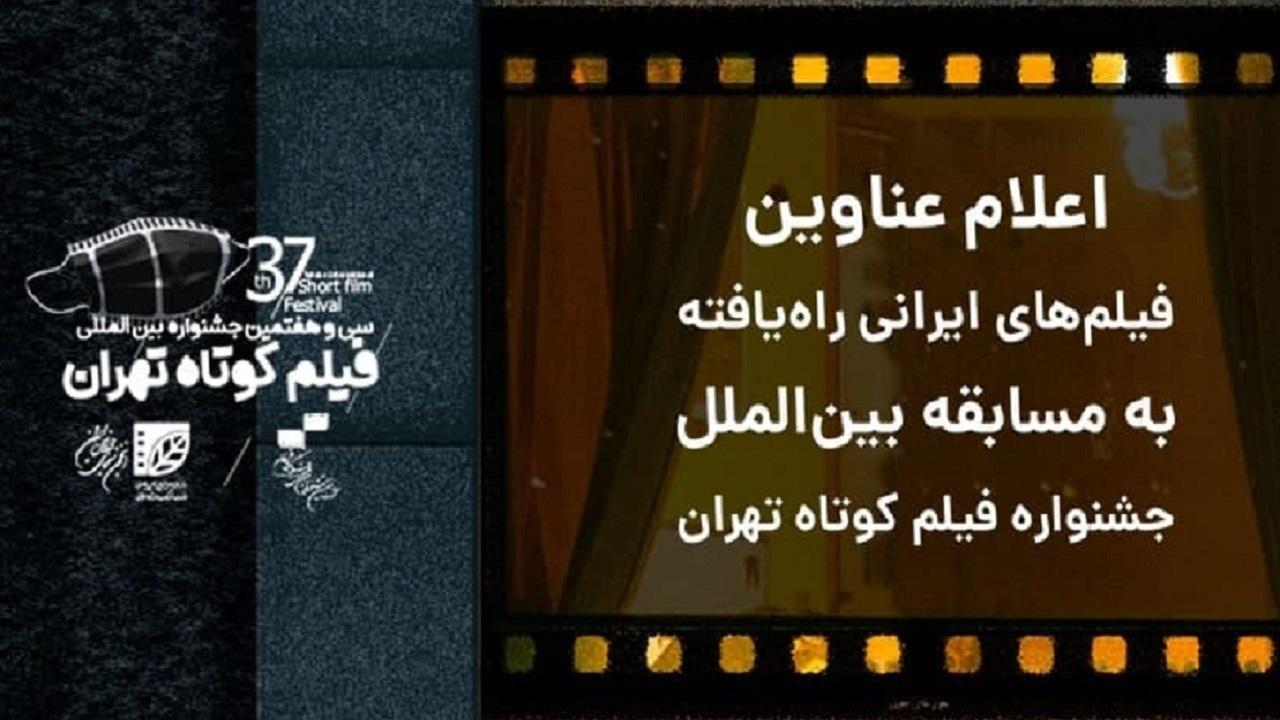 فیلمهای راهیافته به مسابقه بینالملل جشنواره فیلم کوتاه تهران مشخص شدند